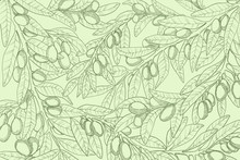 Horizontal Vector Hand Drawn Background With Olive Branch, Berry And Leaves In Engraved Style. Sketch Illustration With Green Olives Twig On Pastels Green Background. Best For Web Or Print Design