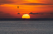 canvas print picture - The rising sun has beautiful colors floating above the sea.