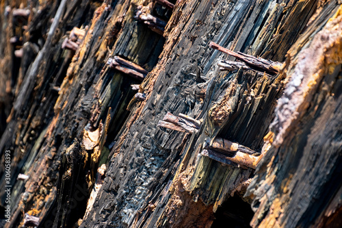 Photo Wooden planks from a sunk Spanish ship that was washed ashore during a hurricane