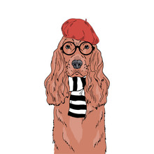 English Cocker Spaniel Breed Dog Wear Round Glasses, Stripy Scarf, Red French Beret Isolated On White Background Symmetrical Pet Portrait. Realistic Hand Drawn Vector Illustration.