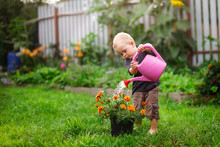 Child Boy Watering Flowers In ...