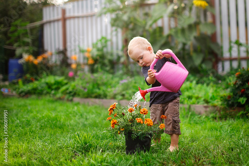 Child boy watering flowers in garden from can Fototapet