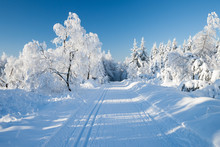 Skiing Area In Germany On A Su...