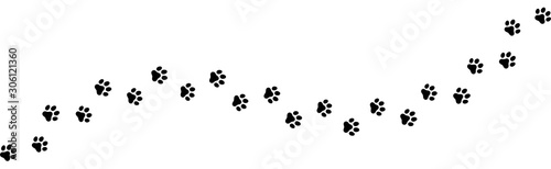 Fototapeten Künstlich Seamless texture of a Paw print trail on white background. Vector cat or dog, pawprint walk line path pattern background
