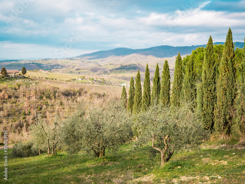 Countryside landscape and Tuscan hills in Chianti, Siena, between Castellina in Fotobehang