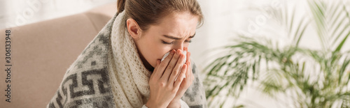 Fotografiet panoramic shot of sick girl, wrapped in blanket, sneezing in napkin