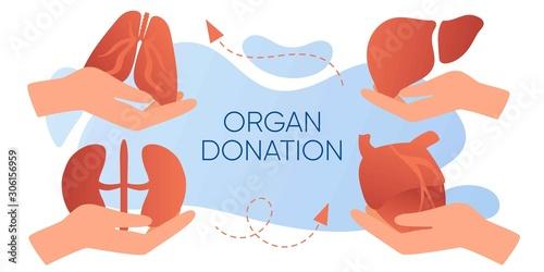 Fotografía  Organ donation web banner, flyer