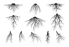 Set Of Tree Roots Silhouettes....
