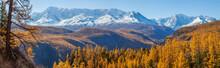 Panoramic Autumn View, Sunny D...