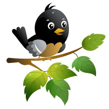 Color Image Of Cartoon Bird On...