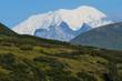 Berge der Alaska Range vom Denali Highway aus gesehen, Alaska - Indieser großartigen Landschaft macht das Autofahren selbst auf einer Schotterstraße Spaß