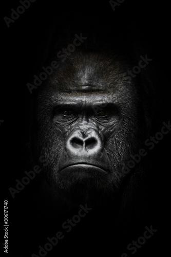 Photo face  in the dark