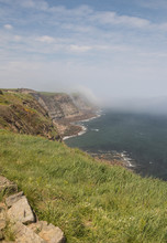 The Cliffs On The Yorkshire Co...