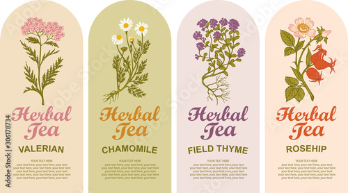 Set of vector labels for various herbal tea Canvas Print