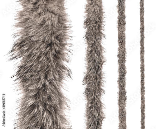 Fotografija set of stripes of gray fur of different sizes on an isolated white background