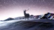 Magical Winter Forest night. Starry night sky animation. Christmas and new year animated background. Christmas Deer.