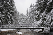 A Bridge Over The Stream In The Snow-covered Forest