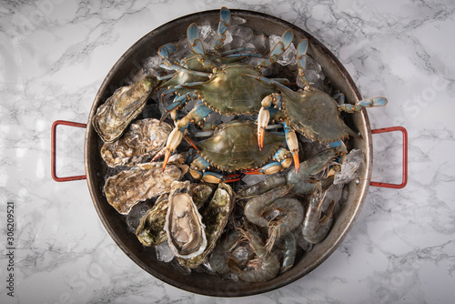 Photo crustacean in pan filled with ice