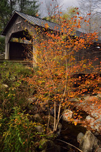 Sunny Break On Pine Brook Covered Bridge Waitsfield Vermont In The Fall