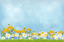 Vector Illustraion Spring Nature Background, Blue Sky, Green Grass And Chamomiles Field. Landscape Of Summer Fields With Sunflowers And Daisy Against Blurry Blue Sky Background