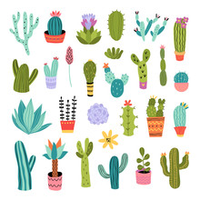 Cactus Vector Illustrations Set. Cute Colorful Succulents And Cacti Hand Drawn Doodles On White Background. Botanical Collection Of Houseplants