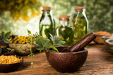 Fototapeta Zwierzęta - Herbs medicine and vintage wooden background