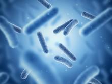 Bacteria. Bacterium. Blue Color. Prokaryotic Microorganisms. 3d Illustration.