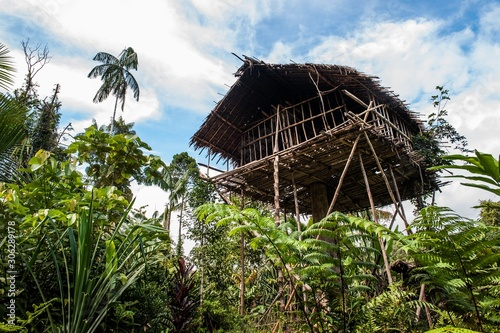 Photo Traditional Koroway house perched in a tree above the ground