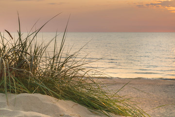 Fototapeta Morze Sunset in sandy beach with sand dunes and grass at sea coast