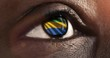 Woman black eye in close up with the flag of Gabon in iris with wind motion. video concept