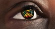 Woman black eye in close up with the flag of Grenada in iris with wind motion. video concept