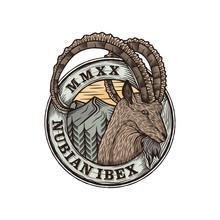 Nubian Ibex Goat Badge Logo Design Illustration, Animal Wildlife Nubia Ovis Bearded Long Horns With Nature Mountain Background Simple Minimalist Sticker Emblem Icon.