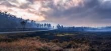 Bushfire On Mulligan Highway I...
