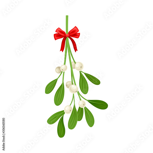 Obraz na plátně Mistletoe Branch Tied With Ribbon Vector Item