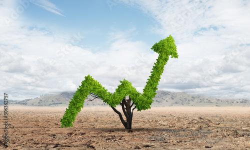 Obraz Green plant in shape of of grow up trend in desert - fototapety do salonu