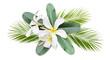 Leinwanddruck Bild - Frangipani (plumeria) flowers and leaves of pulm in a tropical arrangement