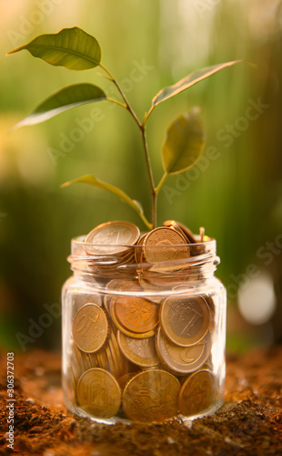 Fotografía Jar with coins and plant on soil outdoors. Money savings concept