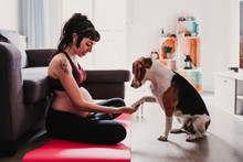 Young Pregnant Woman At Home Practicing Yoga Sport. Cute Beagle Dog Besides