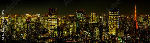 東京の典型的な夜景Night panorama of Tokyo, Japan Fototapeta