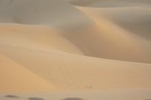 Sand Dune At Vietnam