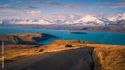 Lake Tekapo surrounded by tawny tussock and snowy peaks, South Island, New Zeala Canvas Print