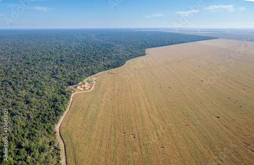 Aerial drone view of the Xingu Indigenous Park territory border and large soybean farms in the Amazon rainforest, Brazil. Concept of deforestation, agriculture, global warming and environment.