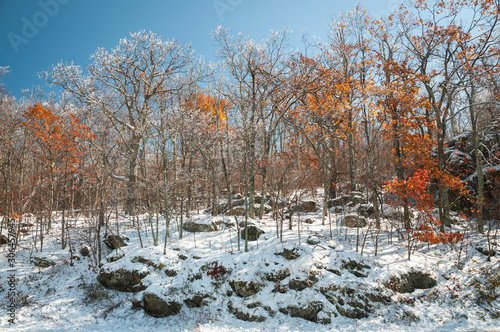 Photo Snow in the mountains of Virginia
