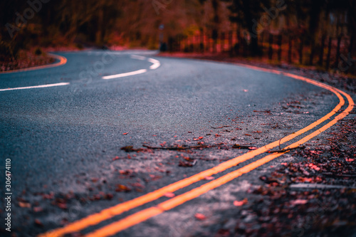 Curvy road in autumn with fall colors and bokeh (blurred background) in a forest Canvas Print