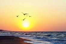 Beautiful Evening Sunset On Th...