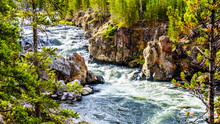 Rapids In The Firehole River A...