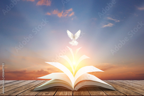 Foto En Lienzo - White pigeons fly out of books that are flicked by the wind in beautiful light on sunset background.freedom concept and international day of peace