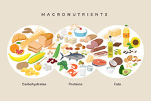 Main Food Groups - Macronutrients. Carbohydrates, Fats And Proteins In Comparison, Foods Icons In Flat Design Isolated. Dieting, Healthy Eating Concept. MacroVector Illustration, Infographic Elements.