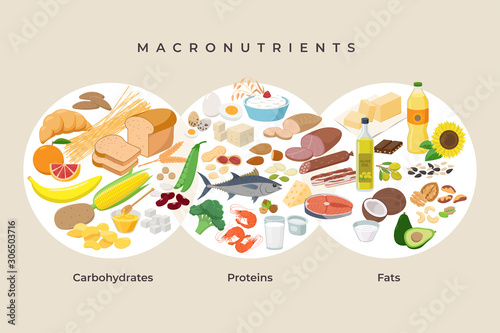 Fototapeta Main food groups - macronutrients. Carbohydrates, fats and proteins in comparison, foods icons in flat design isolated. Dieting, healthy eating concept. MacroVector illustration, infographic elements. obraz
