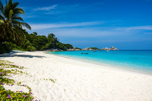 A Beautiful Tropical Sandy Bea...